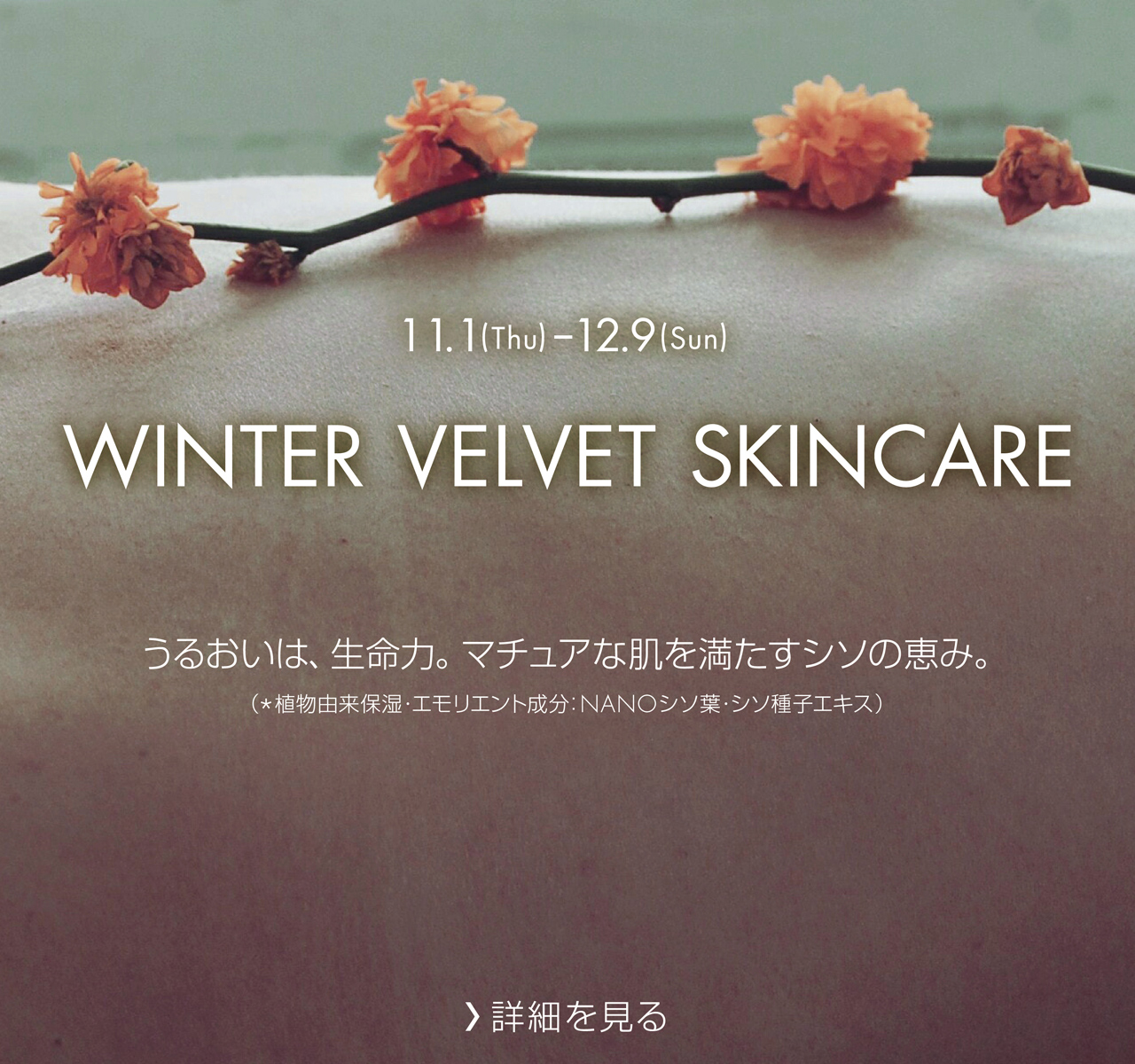 WINTER VELVET SKINCARE